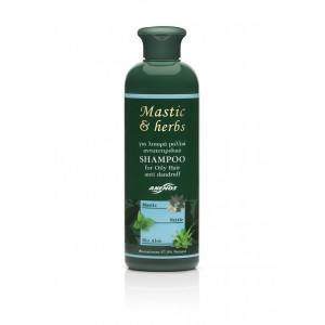 Σαμπουάν mastic & herbs αντιπυτιριδικό για λιπαρά μαλλιά 300ml