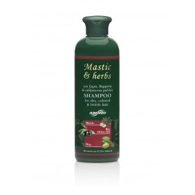 Σαμπουάν mastic & herbs για ξηρά ή βαμμένα / ταλαιπωρημένα μαλλιά 300ml