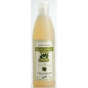 Shampoo for colored & brittle hair 300ml + 1 free